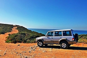 Sintra Palaces, Nature and Ocean views - Private 4x4 Half Day Tour