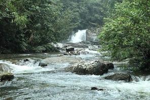 'Explore Sinharaja' rainforest - Six Water Falls hike (Full day)