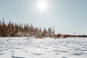 Snowmobile Safari to Reindeer Farm from Luosto