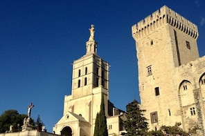 Provence Region Small Group Day Trip with Avignon & Gordes from Aix en Prov...
