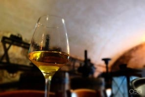 Wine tasting in the Venetian hills