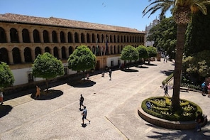 Panoramic guided tour through the historic centre of the city