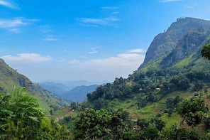 Private Day Tour to Nuwara Eliya from Kandy