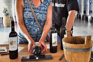 Authentic experience in organic winery