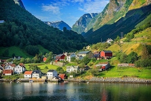 Full Day Guided Return From Bergen To Sognefjord With Flam Railway