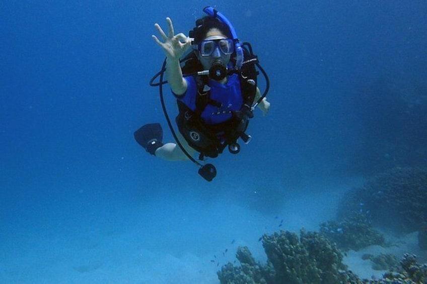 Show item 5 of 9. Guam's Best Beach Diving! - Beginner and Advanced Dives