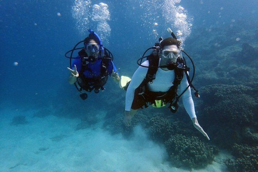 Show item 5 of 10. Guam's Best Beach Diving! - Beginner and Advanced Dives