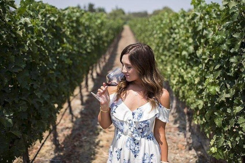 Show item 3 of 4. Private Santa Ynez Valley Wine Country Tour