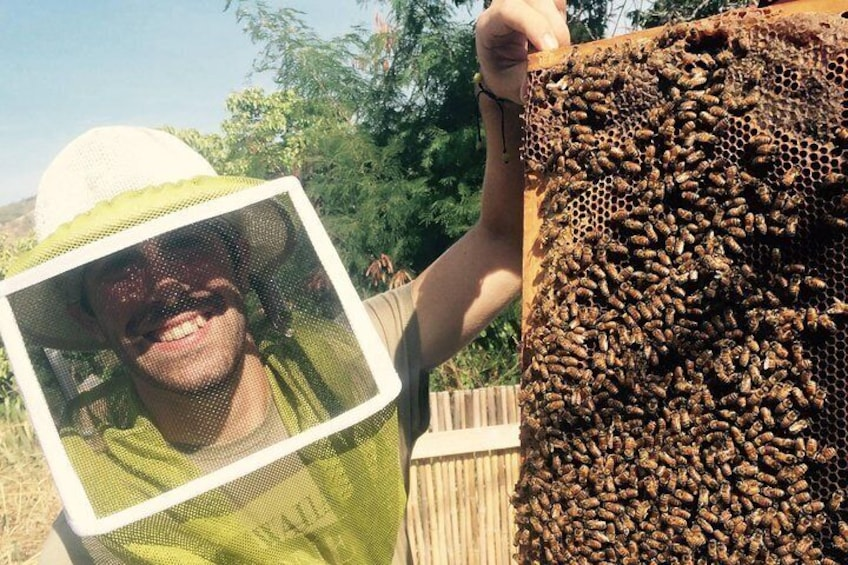Up close and personal, Joe shows and explains the world of bees!