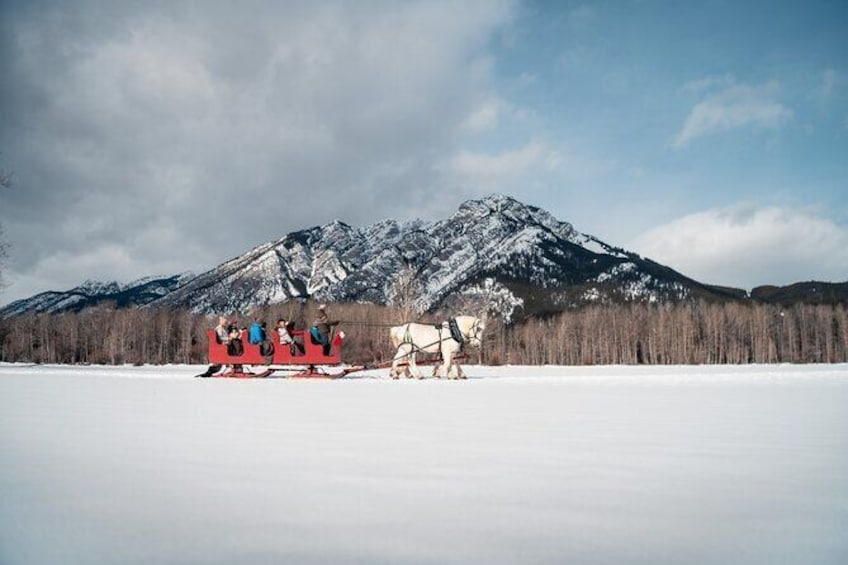 Show item 2 of 8. Horse-Drawn Sleigh Ride in Banff