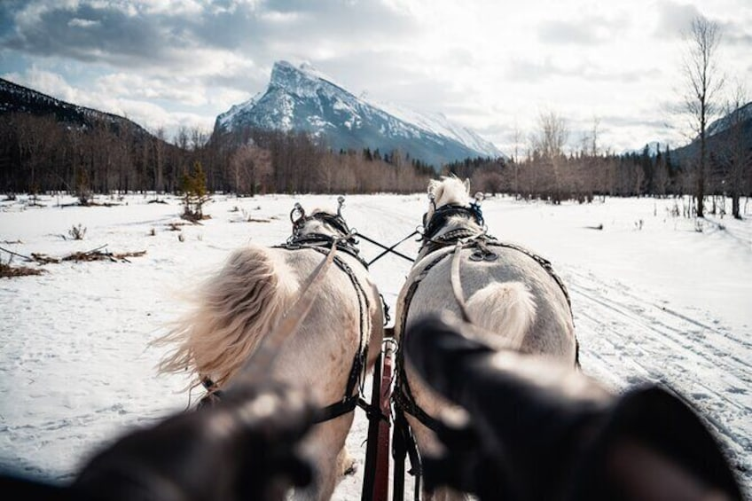 Show item 4 of 8. Horse-Drawn Sleigh Ride in Banff
