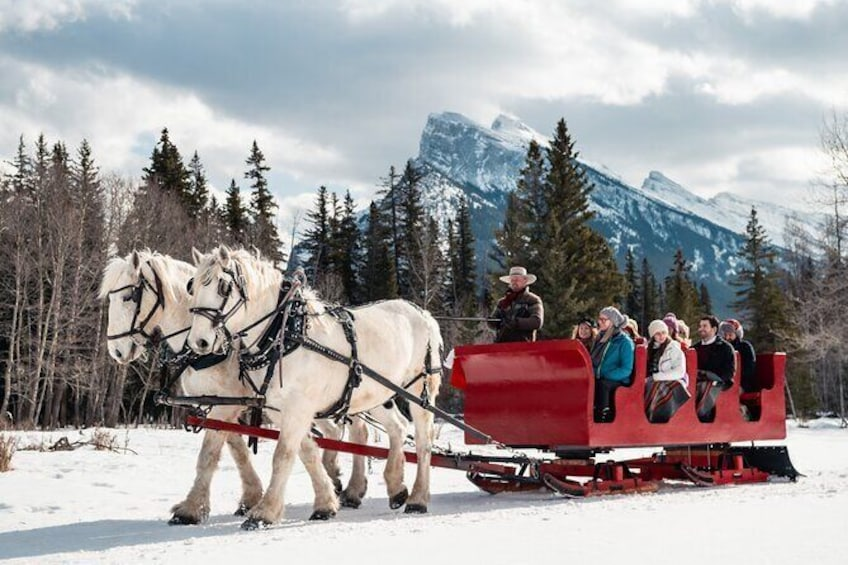 Show item 1 of 8. Horse-Drawn Sleigh Ride in Banff