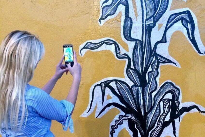 Show item 1 of 10. Oaxaca Street Art Tour
