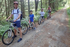 3 Hour Algonquin Park Bicycle Tour (private - base price is for 2 people)