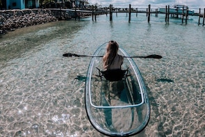 Clear Kayak Tours in Jupiter