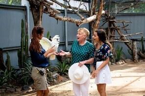 Maleny Botanic Gardens Bird Aviary Experience Including General Entry