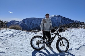 LA's #1 Real Electric Mountain Bike Tour - 2 Hours!