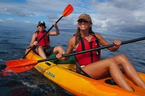 South Maui Kayak and Snorkel Tour with Turtles