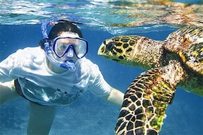 Kauai's Ultimate South Island Zodiac Boat Snorkel Adventure