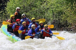 Family Friendly Gallatin River Whitewater Rafting