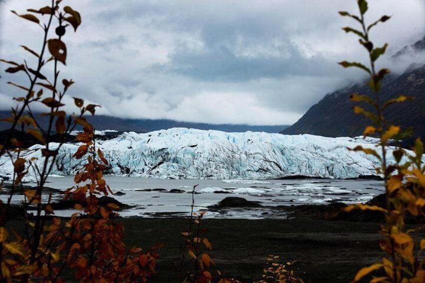Matanuska Glacier Wildlife & Wilderness Photo Tour from Anchorage