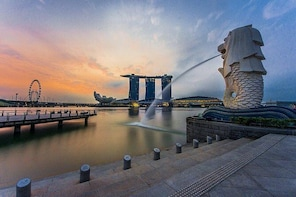 Private Singapore City Tour and National Orchid Garden