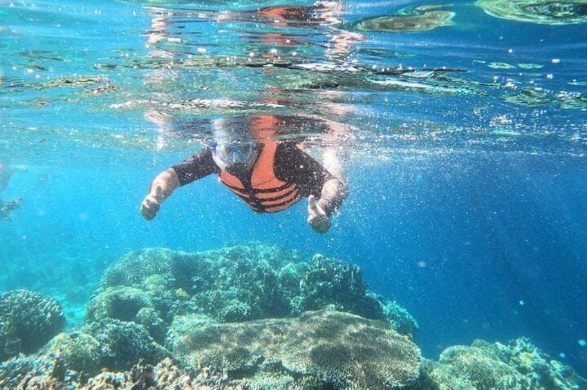 A private snorkel tour to Cebu's Hilutungan