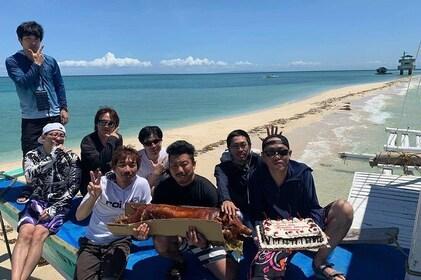 Island Hopping Tour to Nalusuan Island