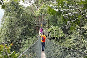 Forest Research Institute Malaysia Frim Nature Trekking From Kuala Lumpur