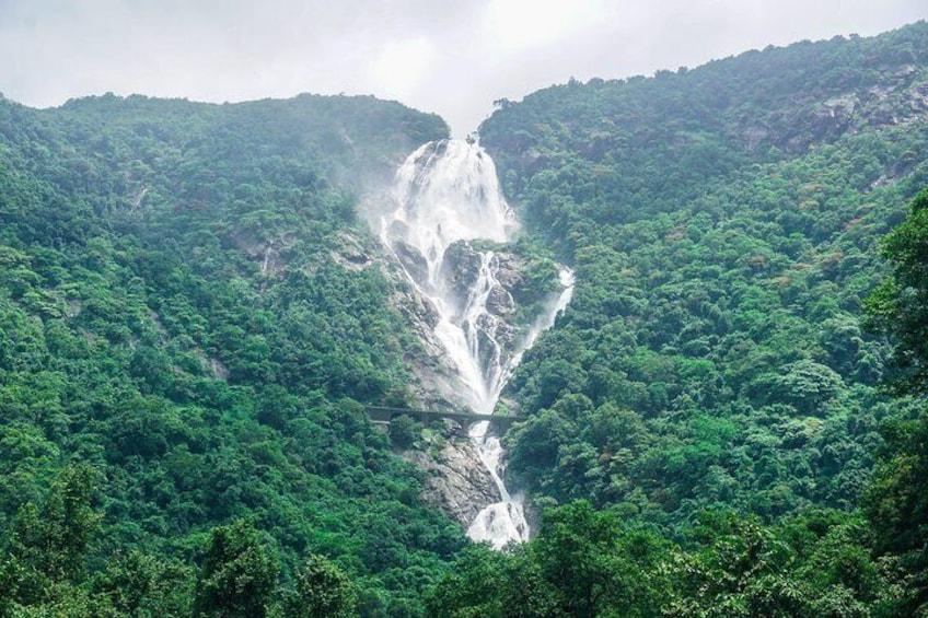 A Dudhsagar Falls and Spice Plantation, Goa - A Private Car Tour With Lunch
