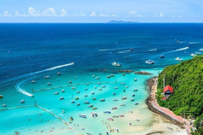 Join coral island by speed boat with Indian Lunch in Pattaya half day trip