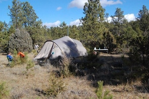 Guided Camping trips