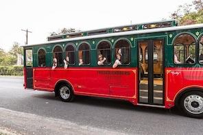 Fredericksburg City Trolley Tour
