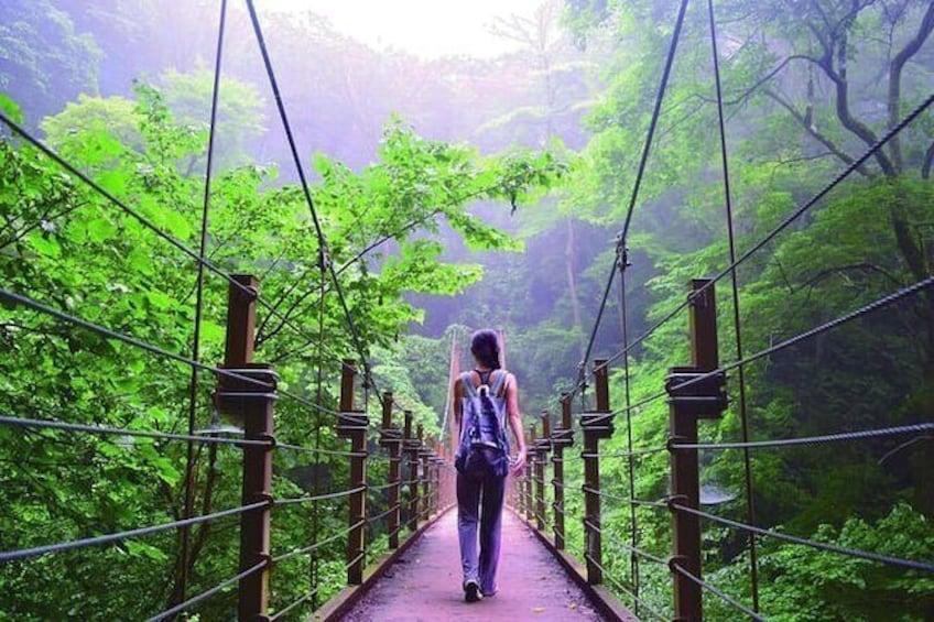 Takao Mountain Adventure