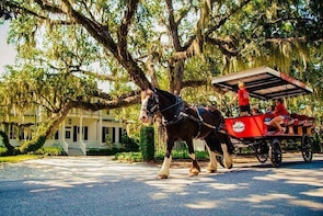 Beaufort's #1 Horse & Carriage History Tour