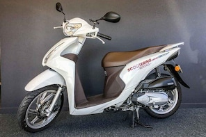 Scooter Rental - Honda NSC110 Dio 110cc