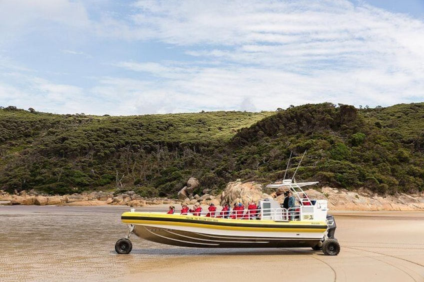 Wilsons Promontory Wilderness Cruise from Tidal River