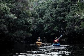 Lune River Kayak Tour