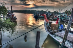 Kuala Selangor Firefly Boat Tour with Dinner