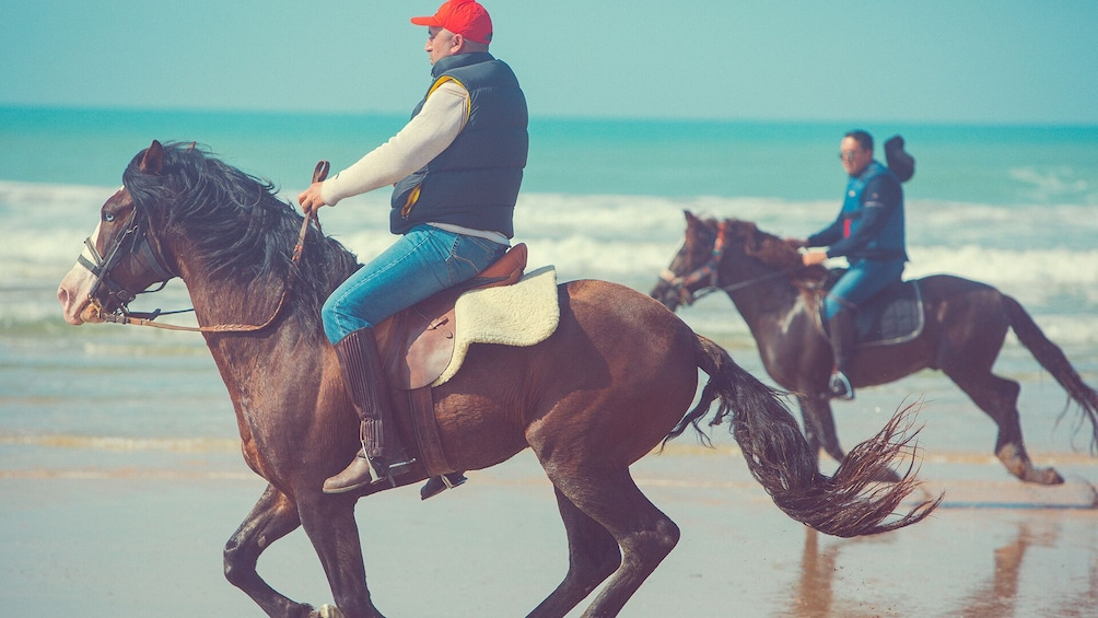 Show item 3 of 10. Horseback Riding: PLAYA BLANCA - Tangier - 1 hour