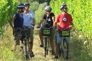 Full-Day Marlborough Wine Region Bike Hire
