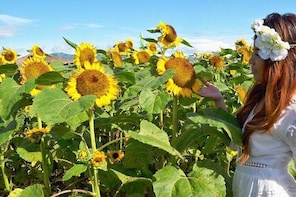 Davao Countryside Agri-Tours
