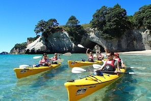 Cathedral Cove Classic Kayaking Tour
