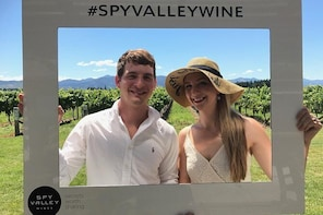 Private Wine Gourmet and Scenic Delights Tour from Blenheim