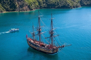 Captain Cook and Dolphin Cruise