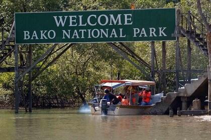 Sarawak Bako National Park with Sea Stack Tour