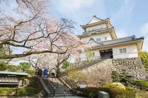 Historical Castle & Shinto Shrine Tour