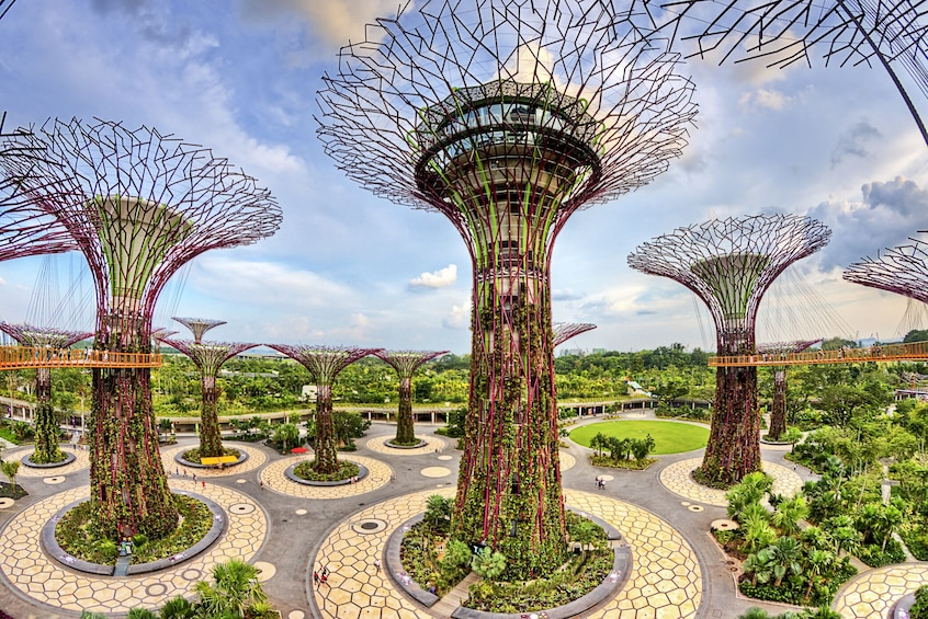 Show item 5 of 5. Gardens by the Bay