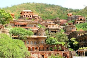 Private Custom Day Tour: Neemrana Sightseeing with Lunch