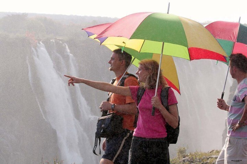 Guided Tour of Falls
